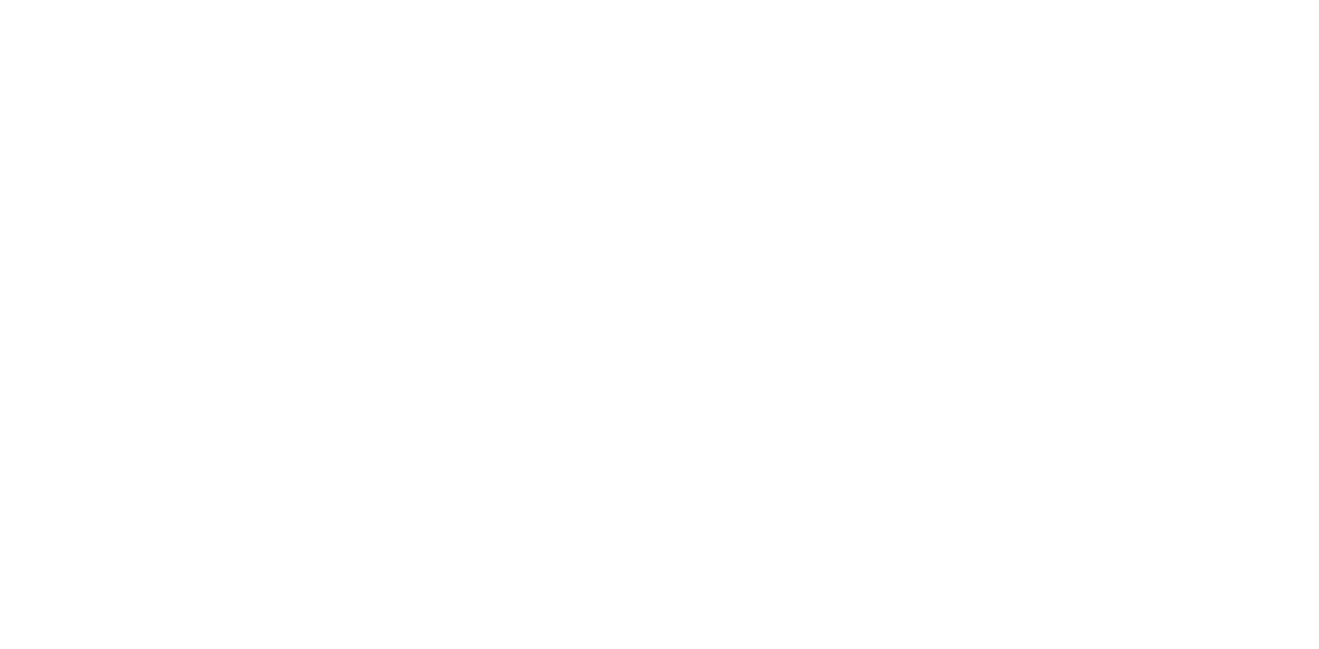 Logo for TLMdX 2020