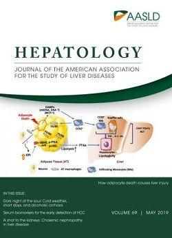 Hepatology cover
